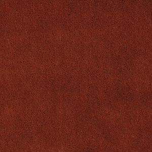 CH 01534300 APOLLODOR Guava Scalamandre Fabric