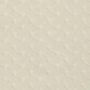 CL 0001 36433 ARGO CANESTRINO Latte Scalamandre Fabric
