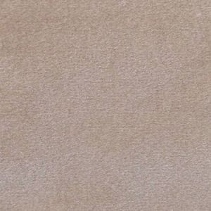 CL 0004 36432 ARGO Castoro Scalamandre Fabric