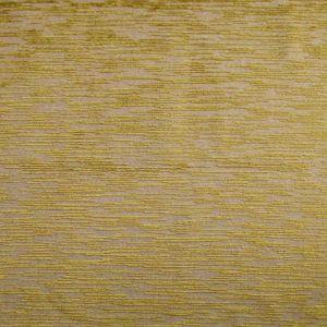 CL 0004 36437 EDO COORDINATO Oliva Scalamandre Fabric
