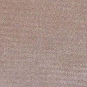 CL 0005 36432 ARGO Tortora Scalamandre Fabric