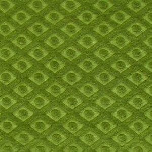 CL 0024 36434 ARGO TRELLIS Muschio Scalamandre Fabric