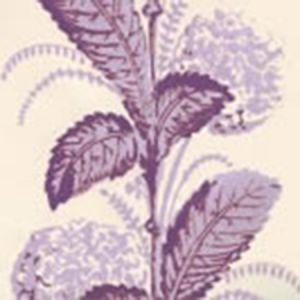 303309WP CLIMBING HYDRANGEA Lilac On Almost White Quadrille Wallpaper