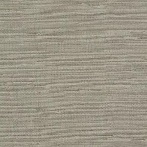 COD0553N Pampas York Wallpaper