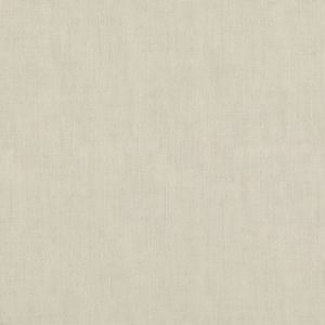 ED85317-104 STIPPLE Ivory Threads Fabric