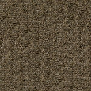ED85324-985 BARA Charcoal Threads Fabric