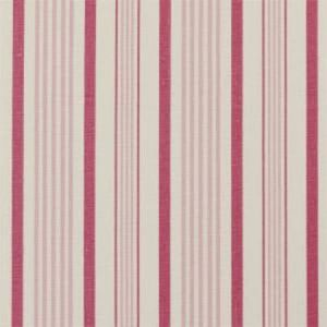 F0427/03 SABLE Raspberry Clarke & Clarke Fabric