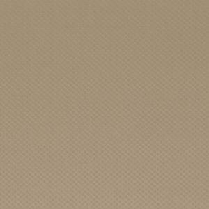 F0541/05 ZIRAH Camel Clarke & Clarke Fabric