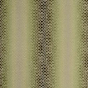 F0790/06 DIAMANTE Olive Clarke & Clarke Fabric