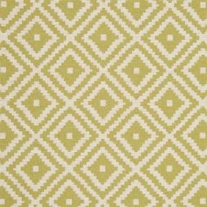 F0810/10 TAHOMA Palm Clarke & Clarke Fabric