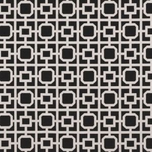 F0890/01 BW1017 Black White Clarke & Clarke Fabric