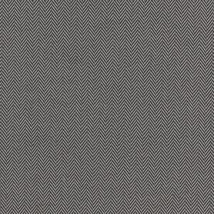 F0899/01 BW1026 Black White Clarke & Clarke Fabric