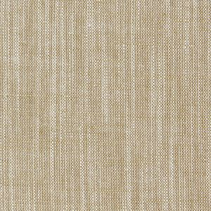 F0965/04 BIARRITZ Bamboo Clarke & Clarke Fabric