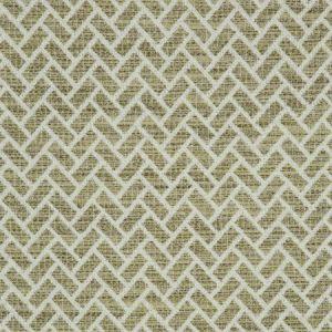 F0982/05 CIPRIANI Olive Clarke & Clarke Fabric