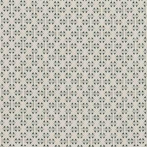 F1000/01 CABANA Charcoal Clarke & Clarke Fabric