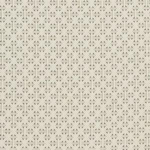 F1000/05 CABANA Taupe Clarke & Clarke Fabric