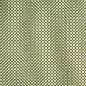 F1024/01 FIESTA Apple Clarke & Clarke Fabric