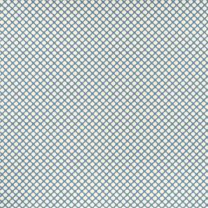 F1024/02 FIESTA Denim Clarke & Clarke Fabric