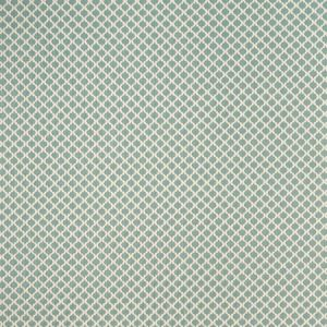F1024/03 FIESTA Mineral Clarke & Clarke Fabric