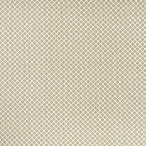 F1024/05 FIESTA Natural Clarke & Clarke Fabric
