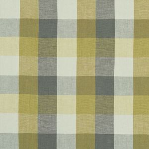 F1042/02 AUSTIN CHECK Citron Natural Clarke & Clarke Fabric