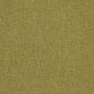 F1068/16 MIDORI Gold Clarke & Clarke Fabric