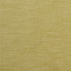 F1099/05 MORAY Citron Clarke & Clarke Fabric