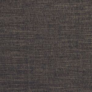 F1099/11 MORAY Ebony Clarke & Clarke Fabric