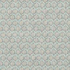F1178/05 DORSET Duckegg Clarke & Clarke Fabric