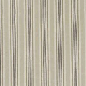 F1310/03 MAPPLETON Charcoal Clarke & Clarke Fabric