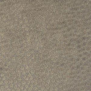 F2212 Putty Greenhouse Fabric