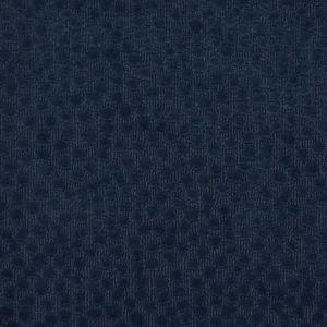F2301 Navy Greenhouse Fabric