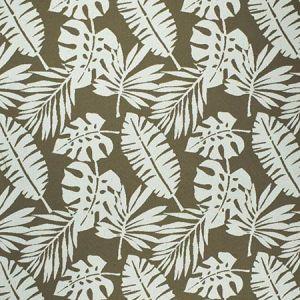 F2593 Rope Greenhouse Fabric