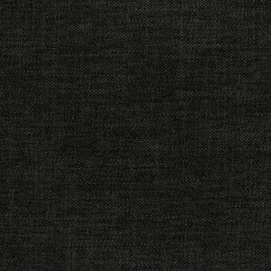 F2953 Ebony Greenhouse Fabric