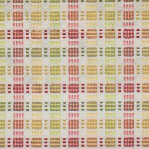 GIFT 4 Tuttifrutti Stout Fabric