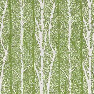 GW 0002 27205 BIRCH WEAVE Spring Green Scalamandre Fabric