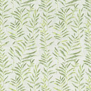 GW 0002 27211 WILLOW WEAVE Spring Green Scalamandre Fabric