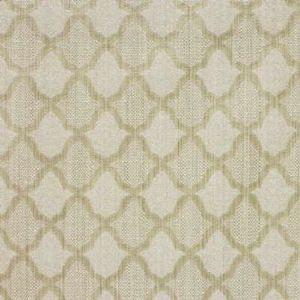 GWF-2751-101 TAMORA WEAVE Birch Groundworks Fabric