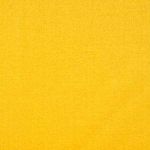 H0 00031628 EMOTION Jaune Scalamandre Fabric
