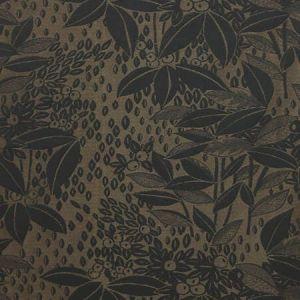 H0 0002 4241 VETIVER Encens Scalamandre Fabric