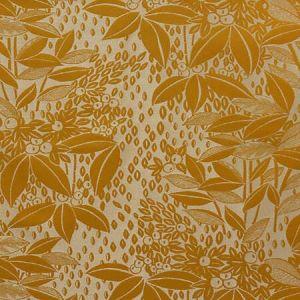 H0 0003 4241 VETIVER Bergamote Scalamandre Fabric