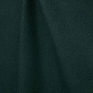 H0 L013 0795 DANDY Sapin Scalamandre Fabric