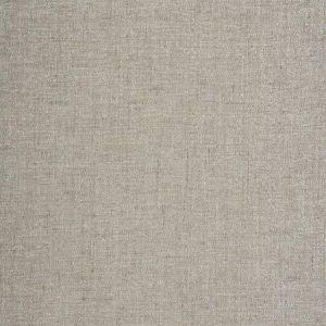 HELIUM Platinum Fabricut Fabric
