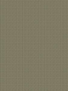 PAXTON Camouflage Fabricut Fabric