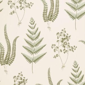 50075W JOCENA Fern 01 Fabricut Wallpaper