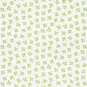 177842 NOSE GAY Moss Schumacher Fabric
