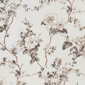 178401 BETTY CHINTZ Charcoal Schumacher Fabric