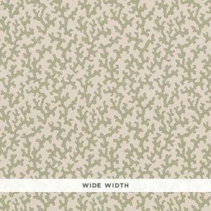 5008003 FOLLY Sage Schumacher Wallpaper