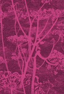 F111/5017-CS COW PARSLEY Magenta Cole & Son Fabric