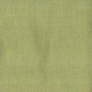 WASHBURN Kiwi Norbar Fabric